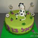 עוגות מעוצבות לבנים , עוגות מעוצבות לבנות , עוגות מעוצבות , עוגות מעוצבות דנה'לה , עוגות לאירועים , עוגות מעוצבות לאירועים , עוגות מעוצבות ליום הולדת