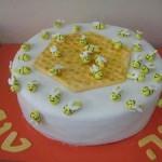 עוגת טו בשבט , עוגה לחג , עוגה לחגים , עוגה לאירועים